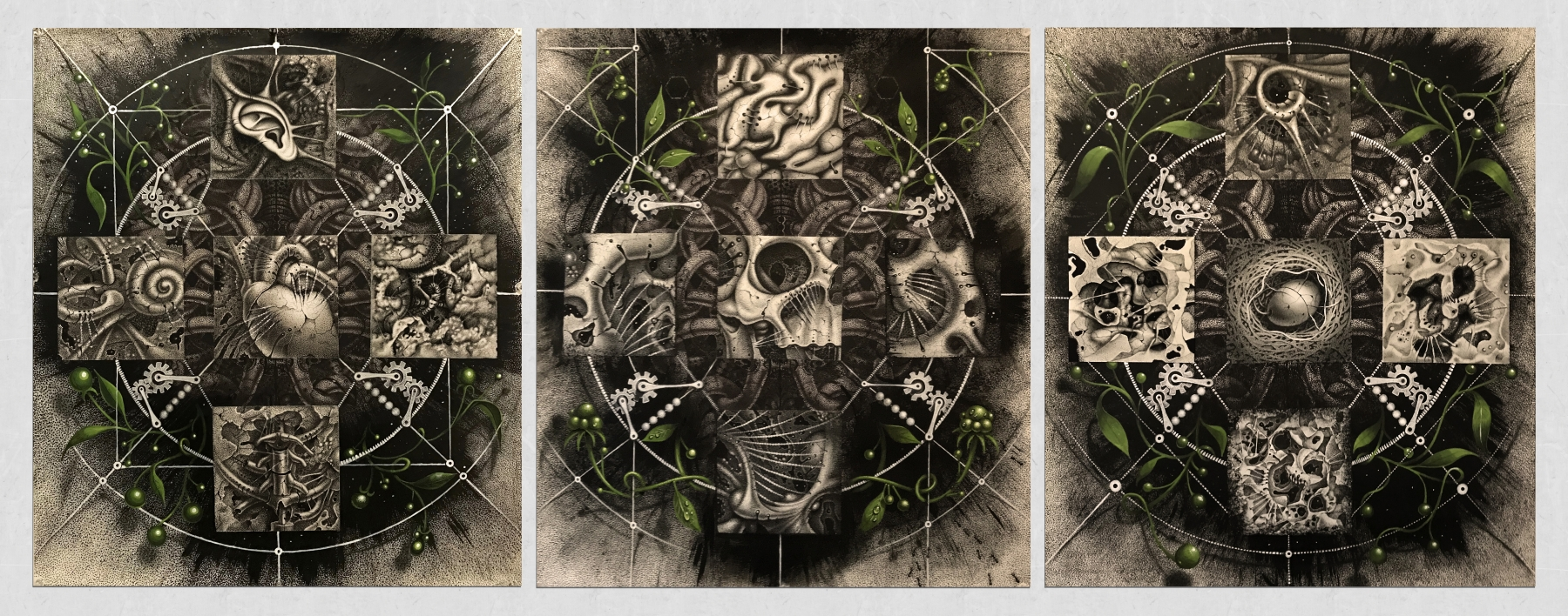 Samuel Gomez, Renascence (Tryptic), 2018, Graphite, ink and acrylic on paper.  29 x 66 inches, 29 x 22 inches (each panel)