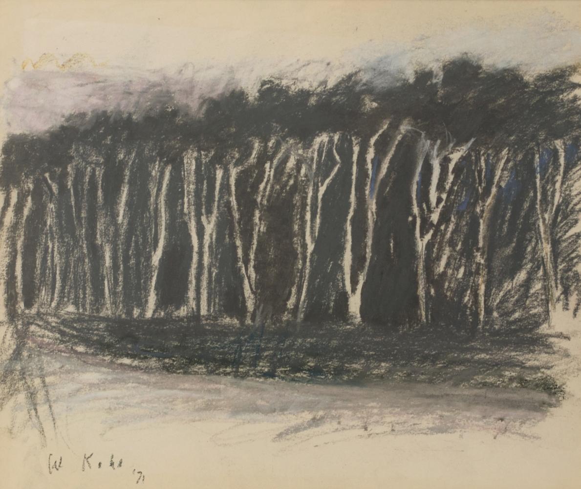 Wolf Kahn, Grey and White, 1971, Pastel, Wolf Kahn Pastels, Wolf Kahn Pastels for sale, Wolf Kahn trees