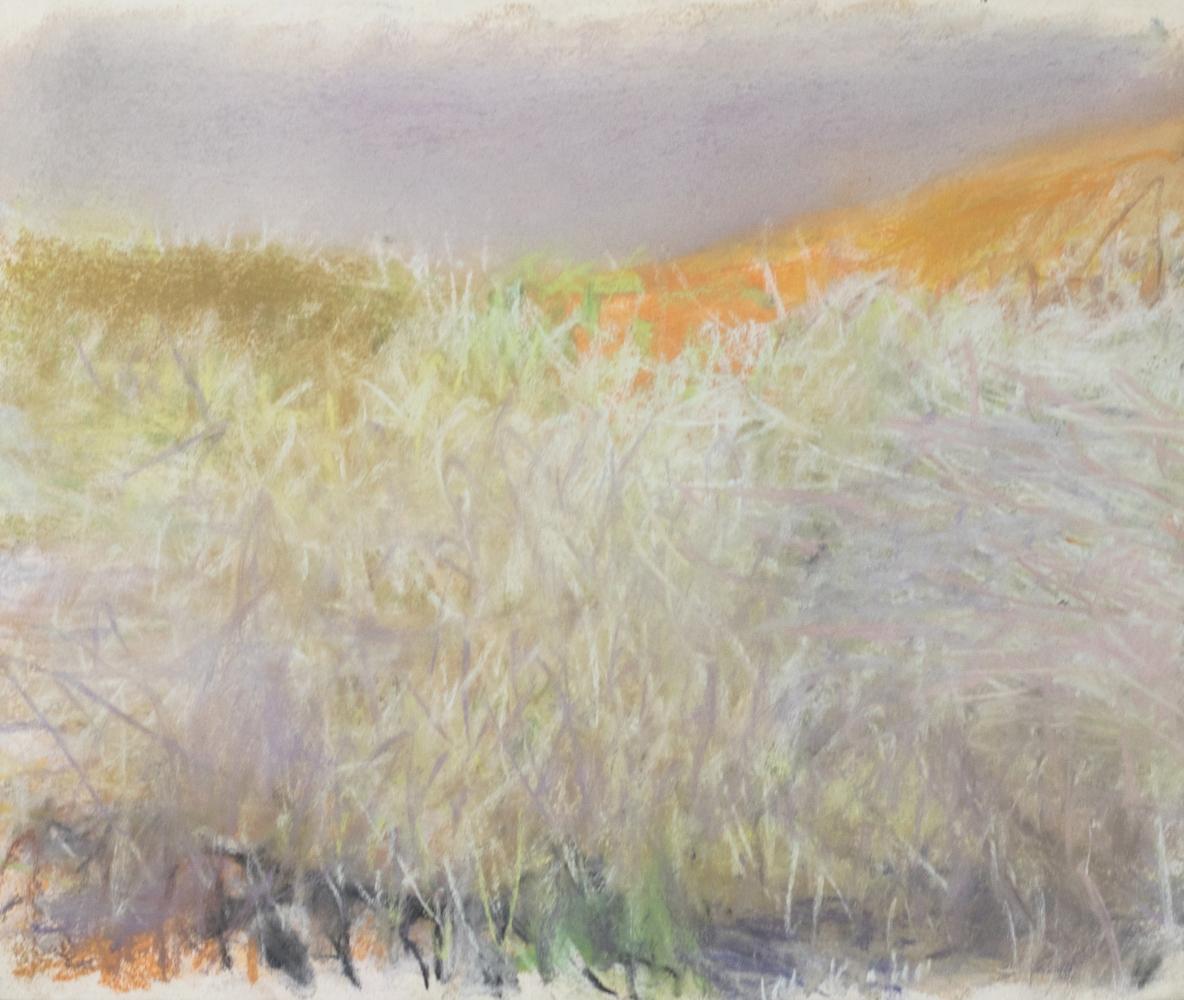 Wolf Kahn, Tangle Before a Yellow Hill, 2006, Pastel, 14x17 inches, Wolf Kahn Pastels, Wolf Kahn Pastels for sale, Wolf Kahn Landscape