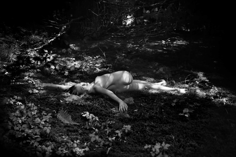 Maryam Eisler Forest Musings 2018
