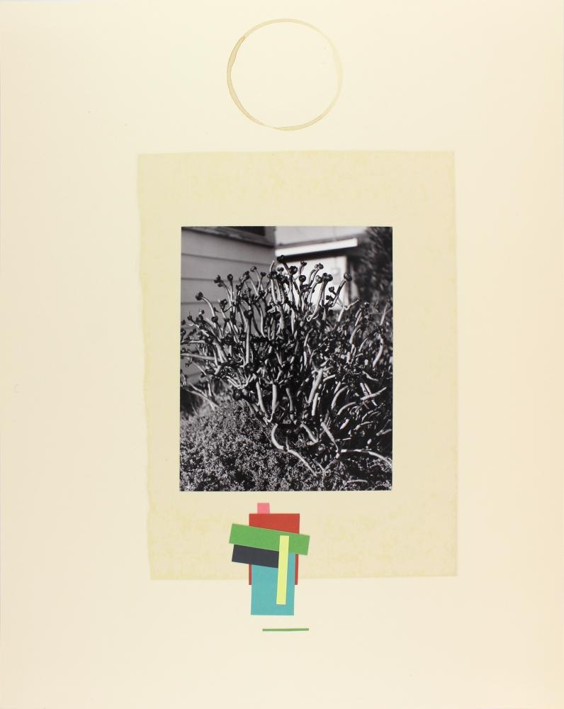 John Gossage, Untitled (Distraction), 1994