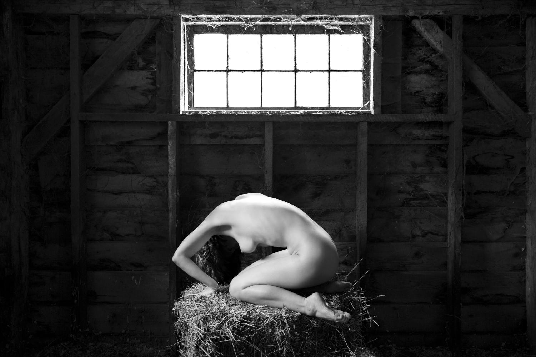 Maryam Eisler Womb(an) 2018