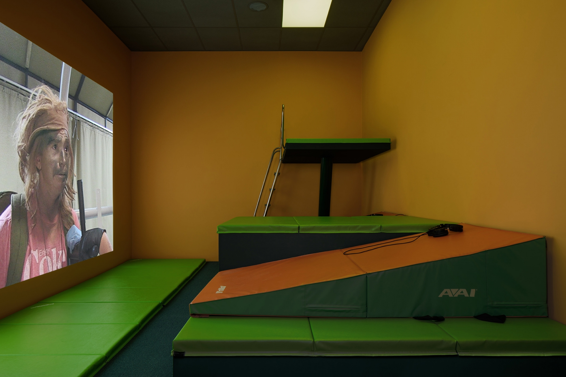 Lizzie fitchryan trecartin artists regen projects components gym mats custom diving bunk wooden platforms message boards carpet paint drop ceiling lighting ambient sound original installation greentooth Choice Image