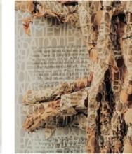 Pablo Lehmann layers paper cut-outs