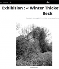 DPN WINTER THICKETS by LAWRENCE BECK