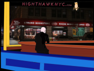 Ellen Harvey in Nighthawk NYC