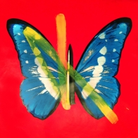 Rubem Robierb: Bullets and Butterflies