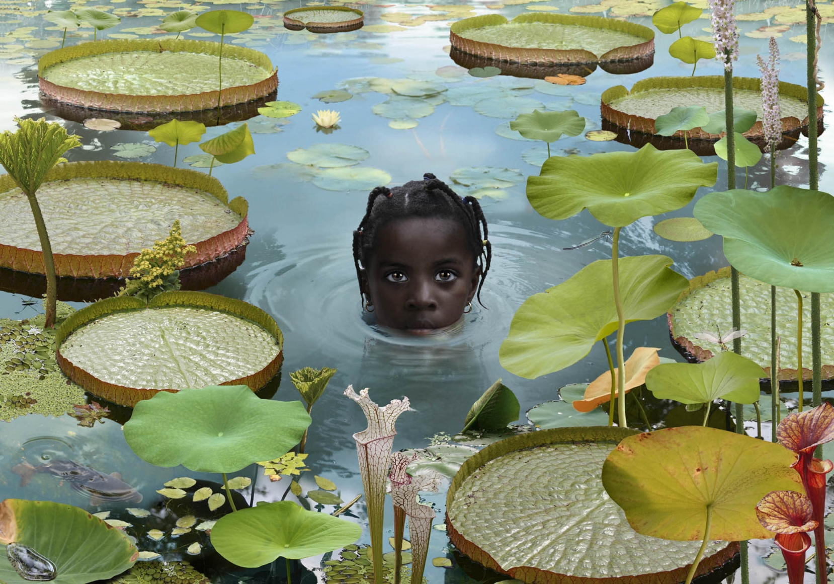 Image result for artist ruud van empel