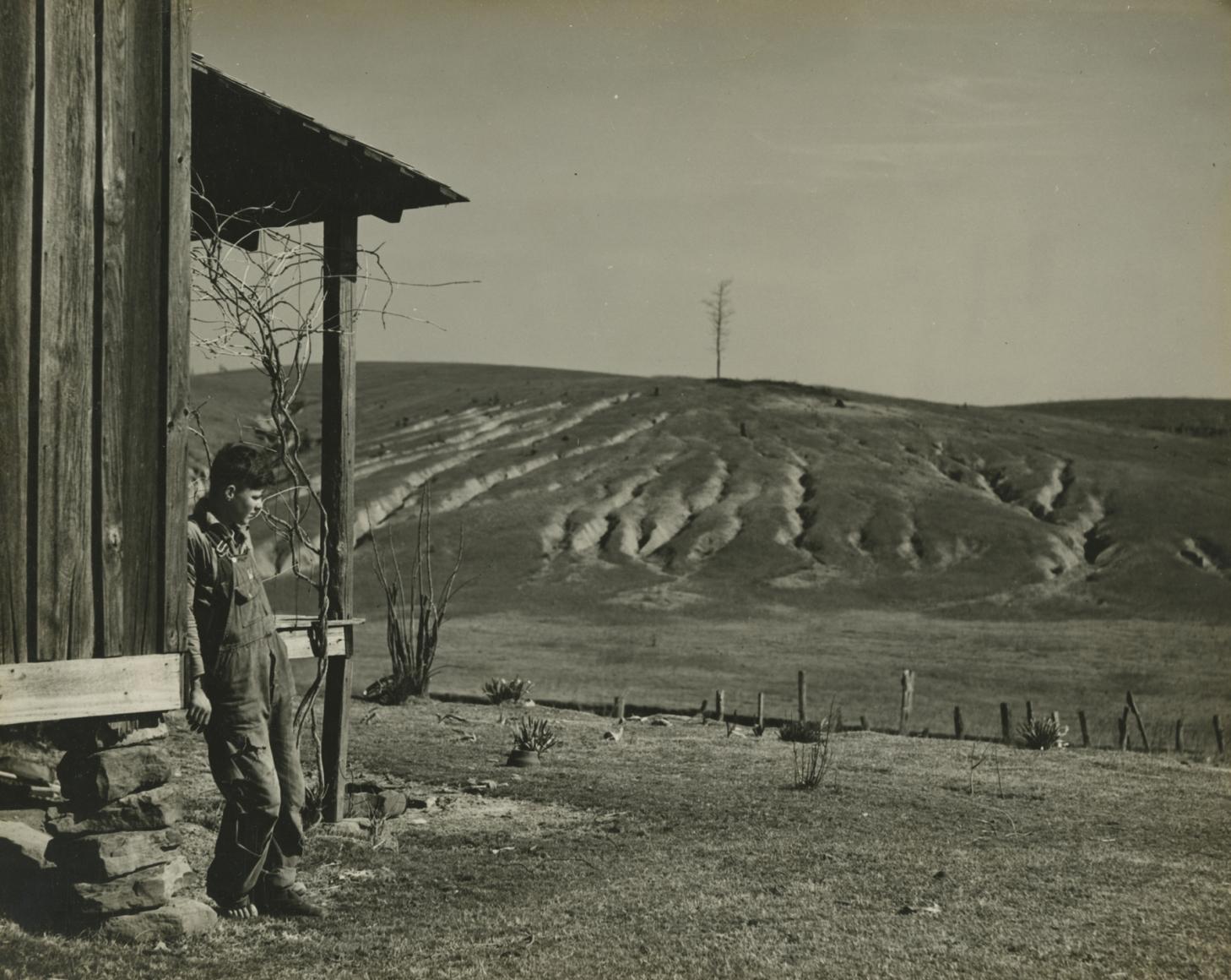 Arthur Rothstein  Eroded land on tenant's farm, Walker County, Alabama, 1937 Gelatin silver print; printed c.1937 7 5/8 x 9 1/2 inches, Howard greenberg gallery, 2020