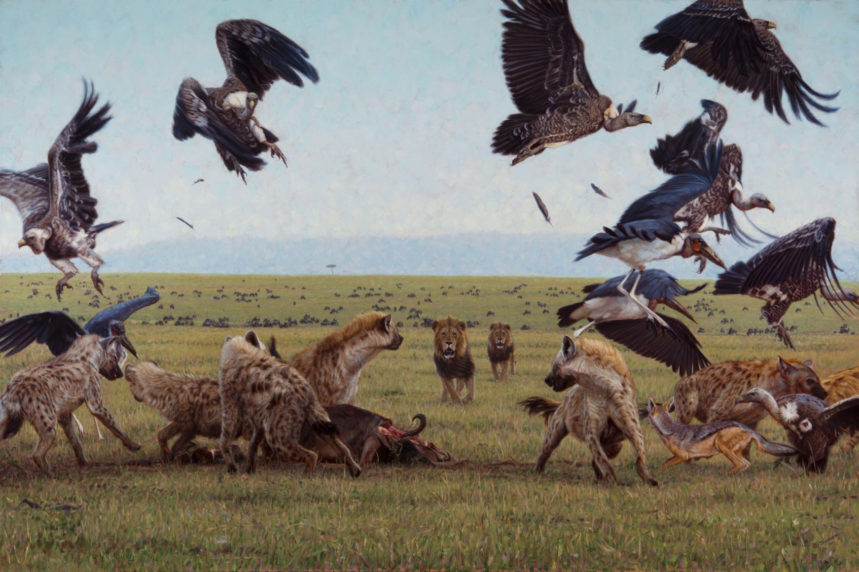 Game of Lions, 2014 - Works - Wildlife Art of John Banovich