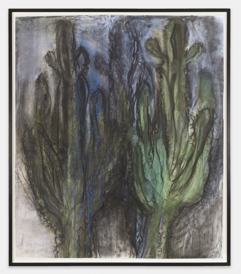 Tucson, Winter 1947, 2014, Charcoal, pastel and watercolor on paper