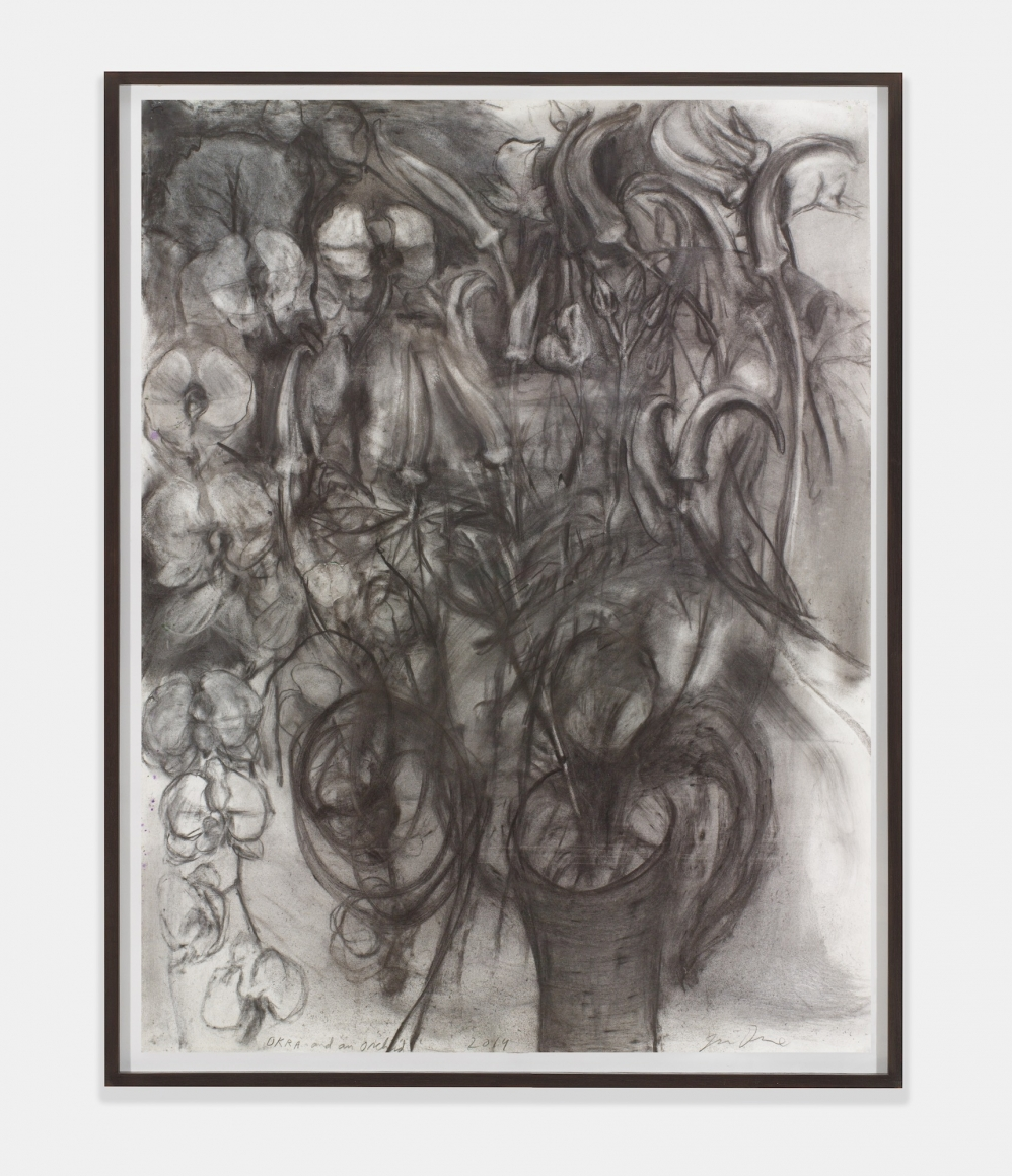 Okra and an Orchid, 2014, Charcoal, pastel, and watercolor on paper