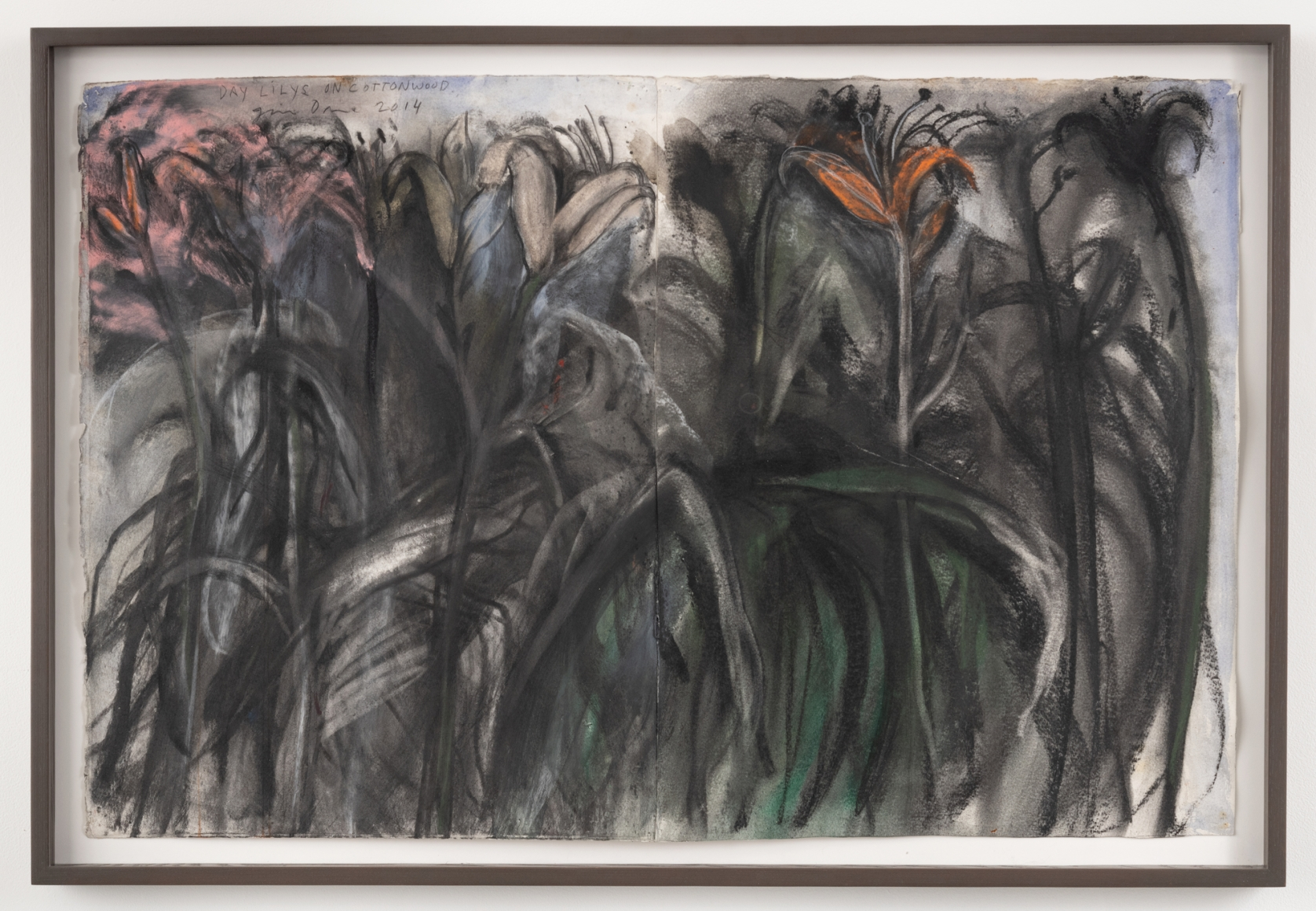 Day Lilys on Cottonwood, 2014, Charcoal, pastel and watercolor on paper