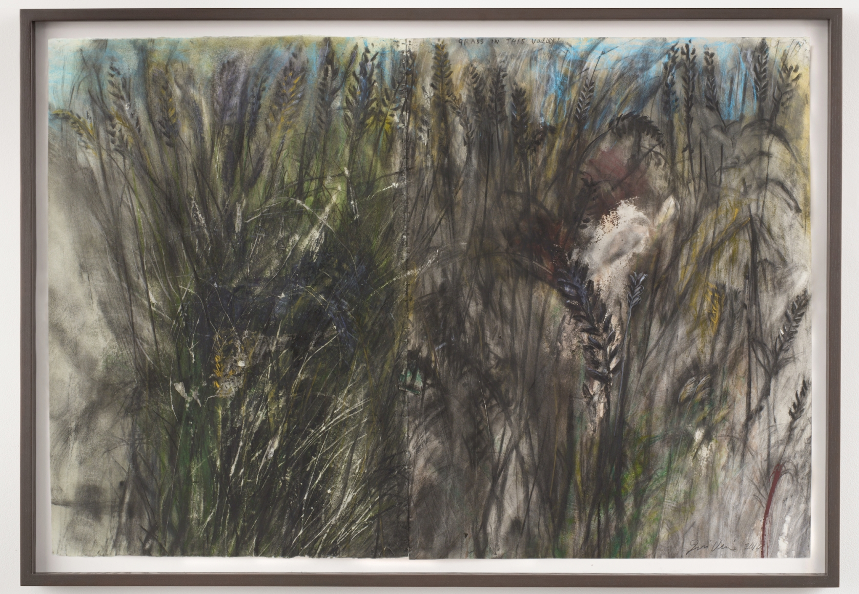 Grass in this Valley, 2014, Charcoal, pastel and watercolor on paper