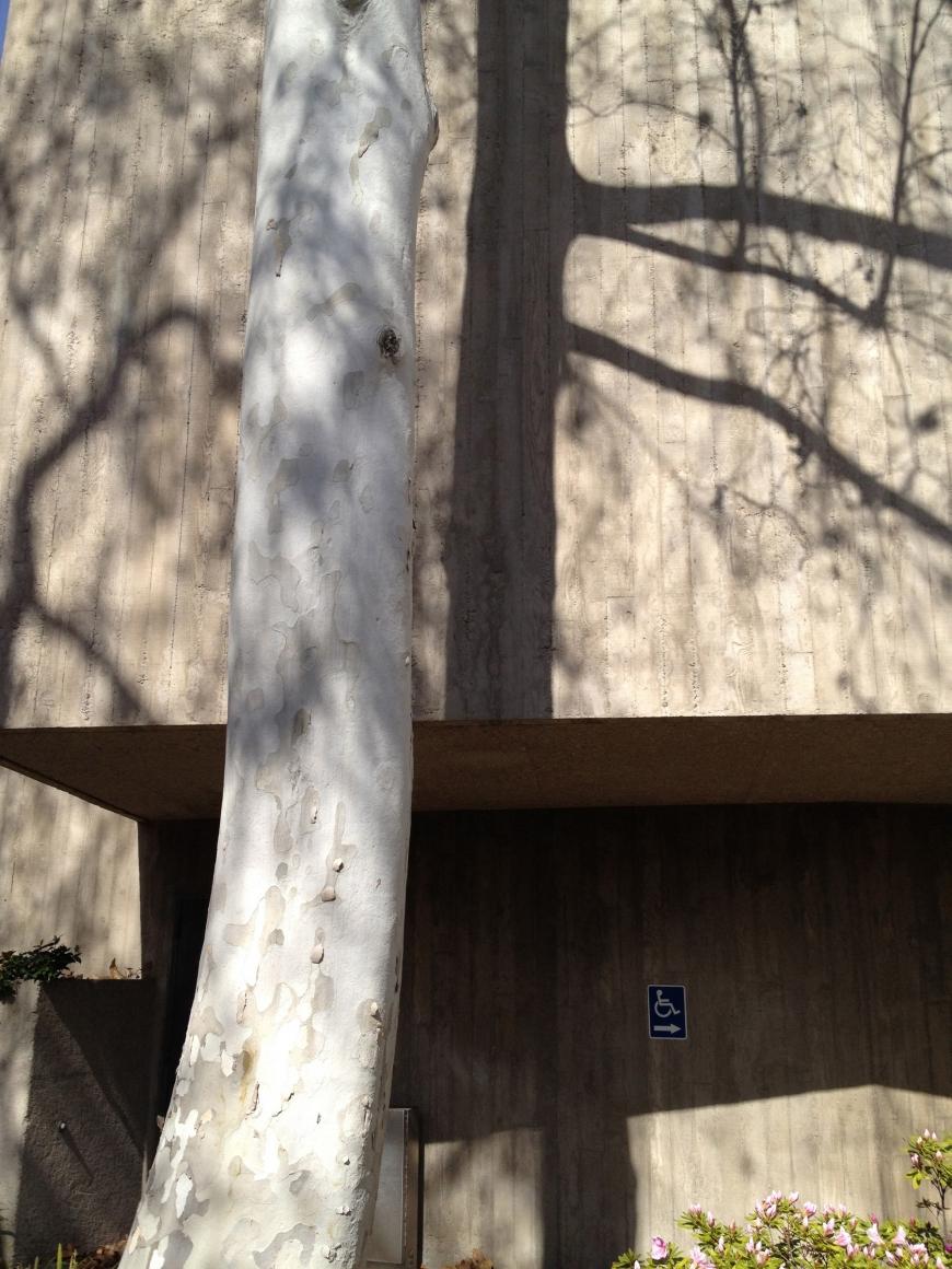 Exposed Concrete I, 2014