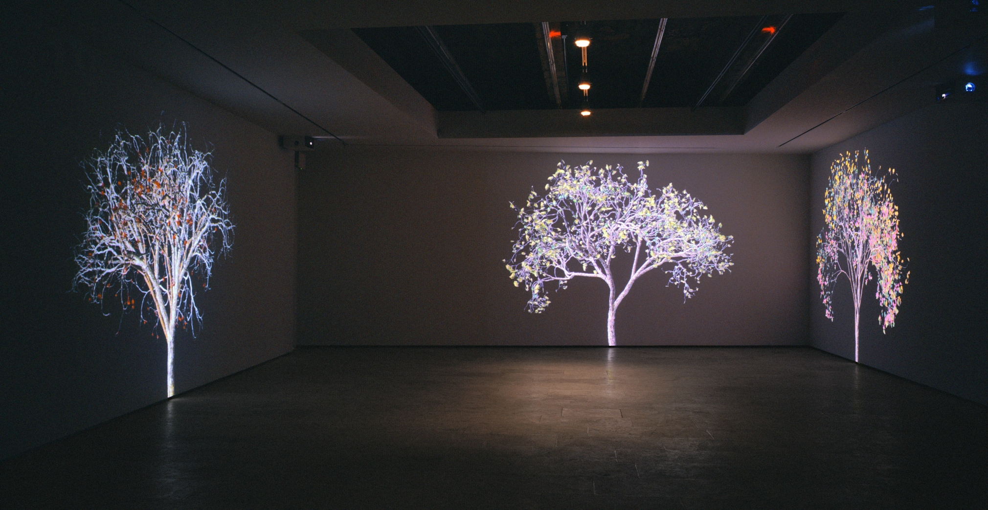 Jennifer Steinkamp: Digital Nature, Installation view, Telefónica Foundation Space, Madrid, Spain