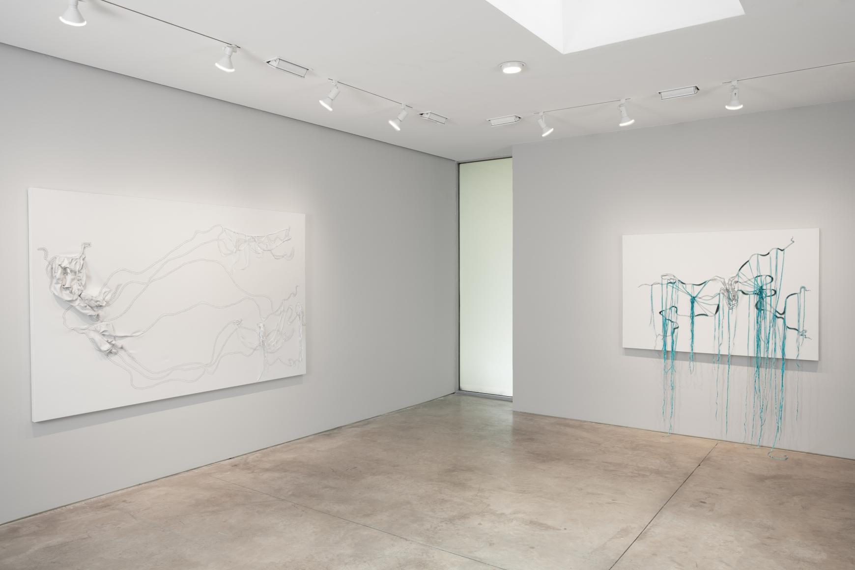 Nicholas Hlobo, Ulwamkelo installation view 7