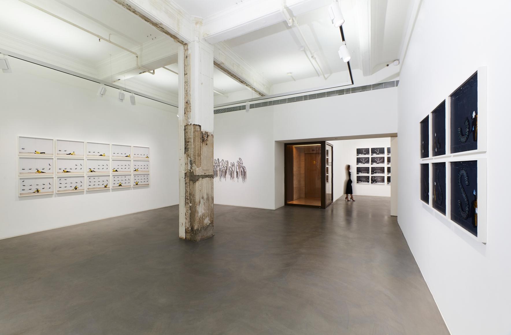 Exhibition view 3 of Robin Rhode & Nari Ward: Power Wall