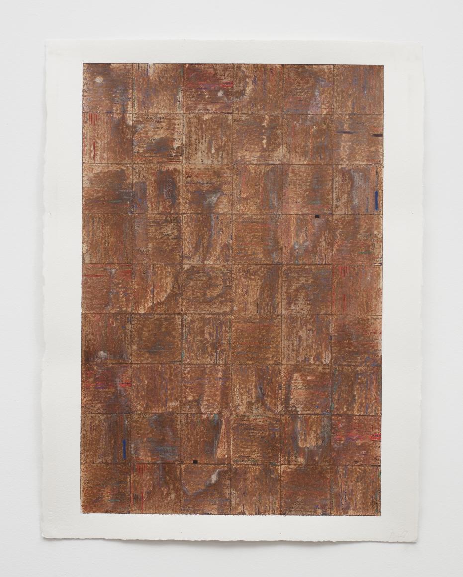 MCARTHUR BINION, dna: sepia: paper: ix, 2016