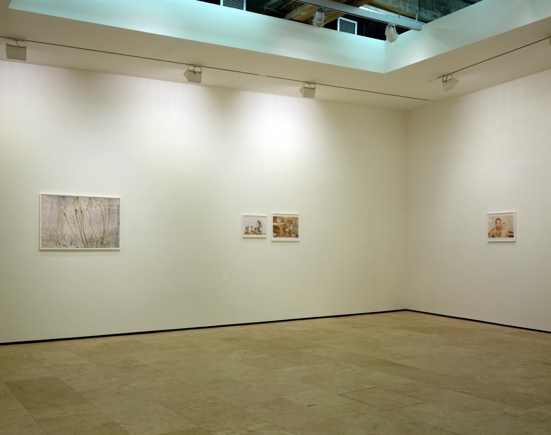 JUERGEN TELLER: NÜRNBERG Installation View 5.