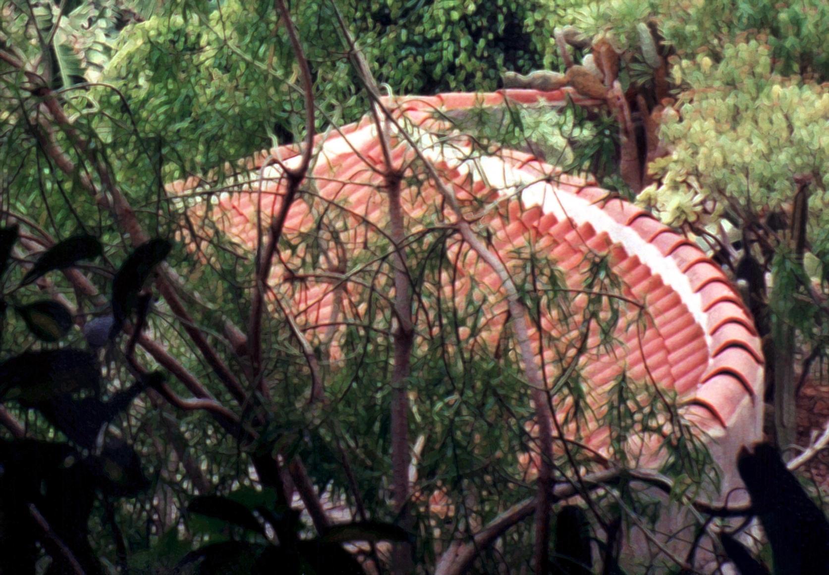 JÖRG SASSE, 8034, 1997
