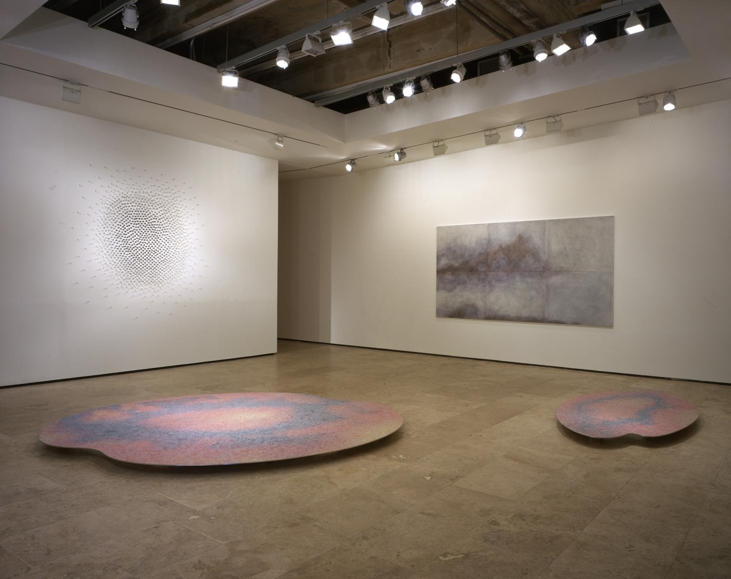 TERESITA FERNANDEZ Installation at Lehmann Maupin Gallery View 2.