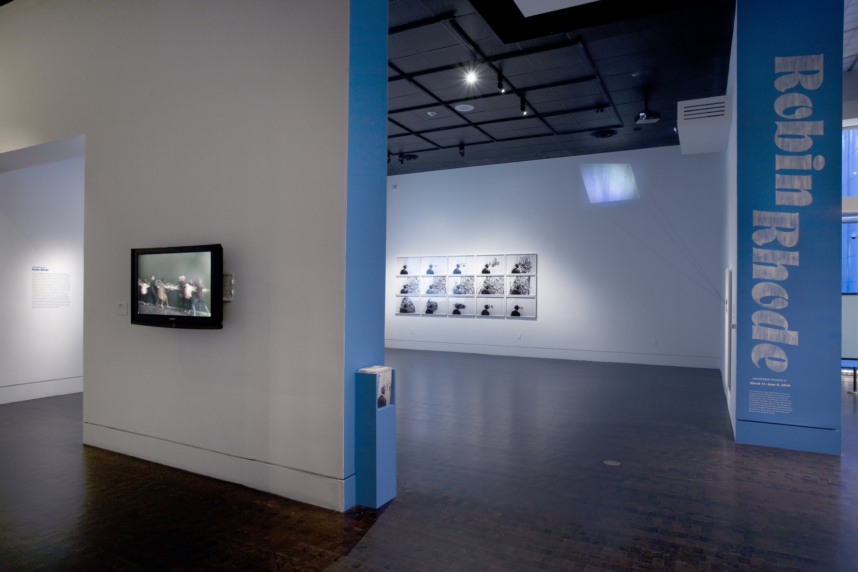 ROBIN RHODE Installation view