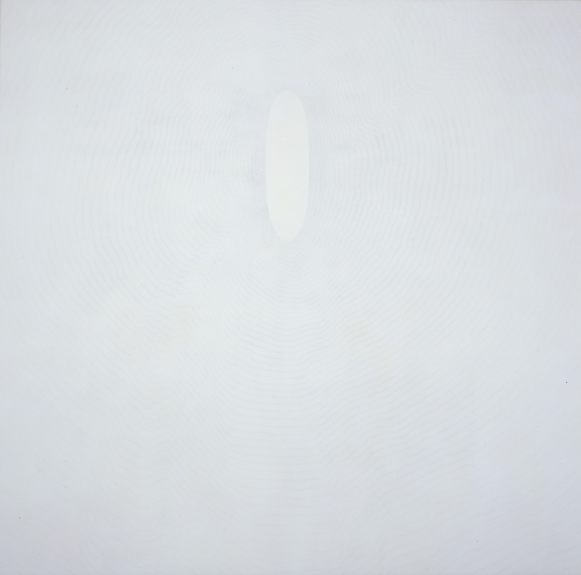 SHIRAZEH HOUSHIARY White shadow, 1998