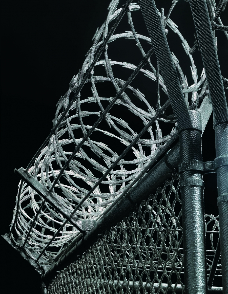 麗莎·éœ²  Security Fence (detail), 2005