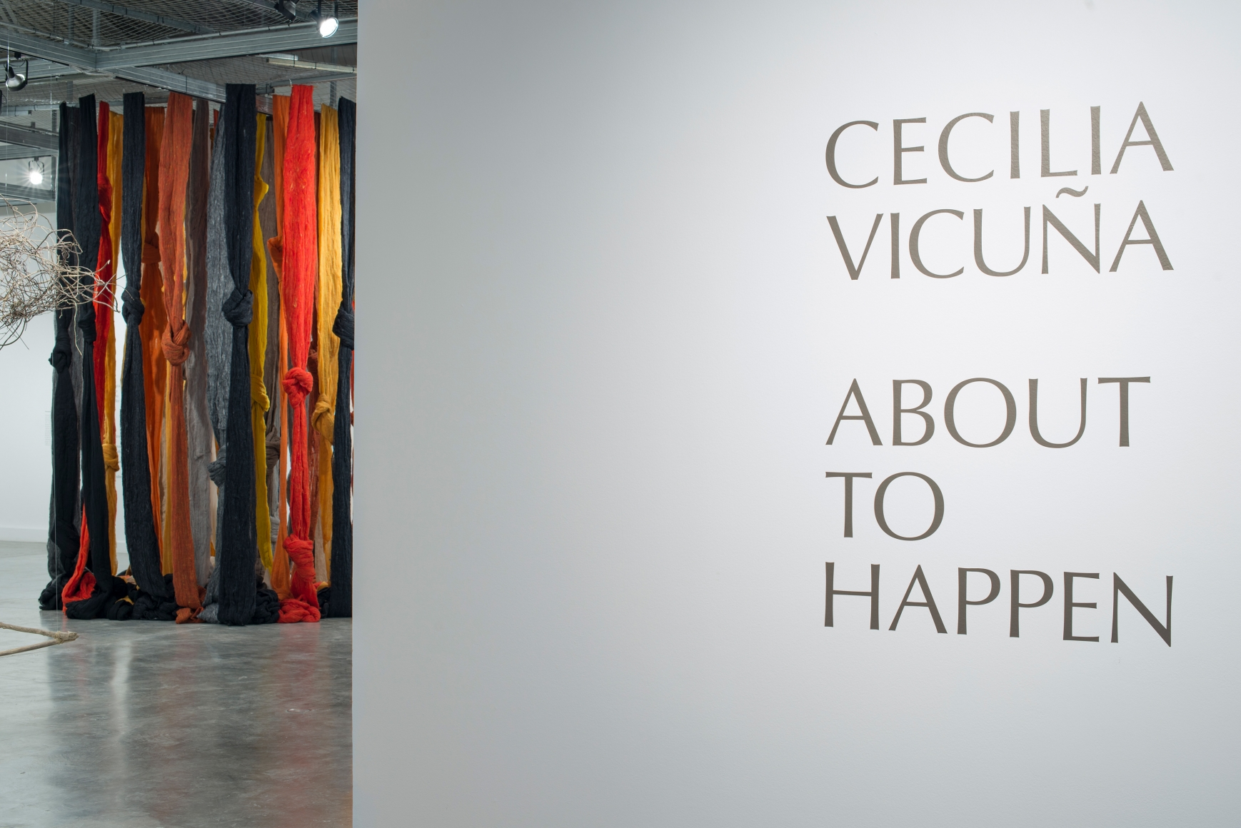 CECILIA VICUÑA, About to Happen