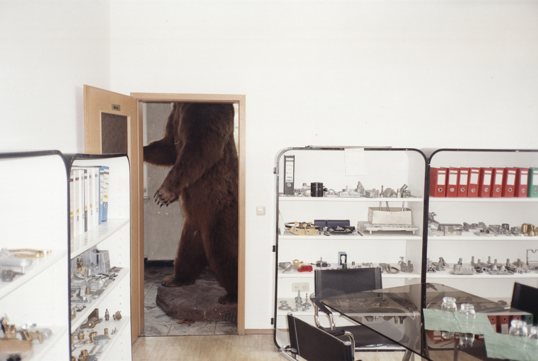 JUERGEN TELLER, Brown Bear, Bubenreuth, Germany, 2002