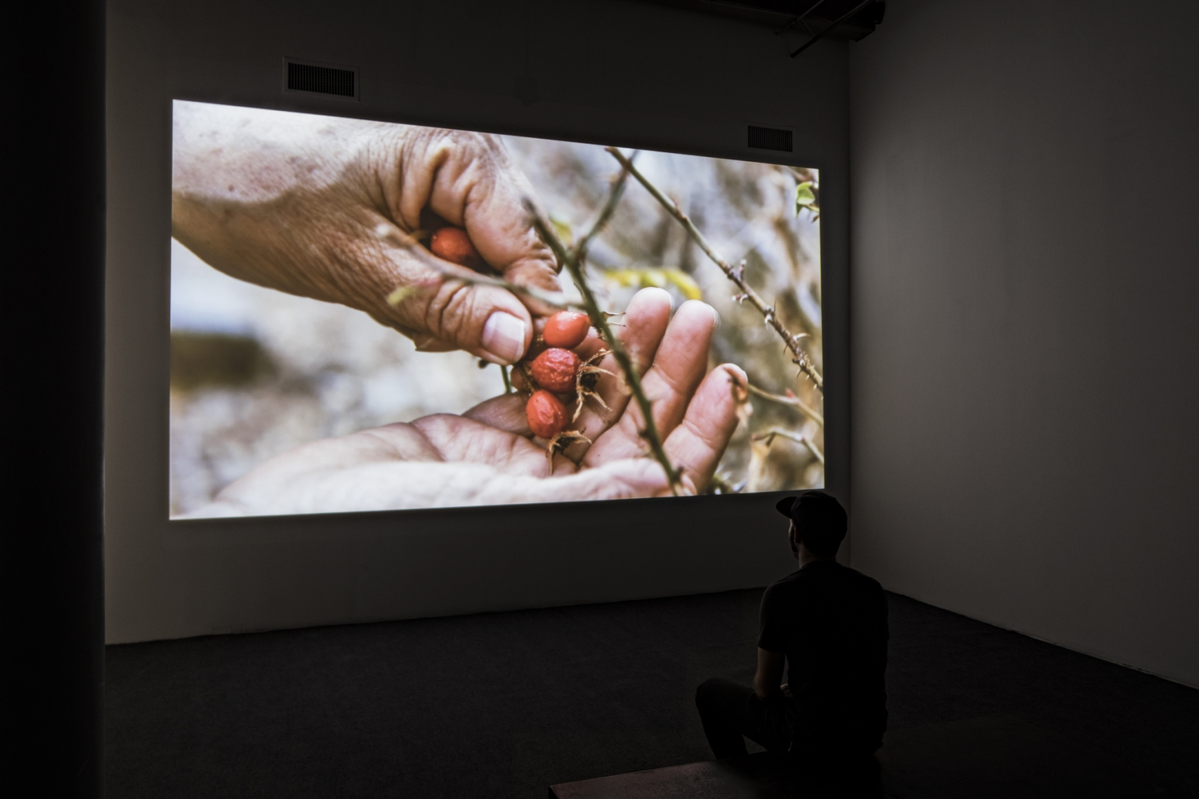 Cecilia Vicuña: About to Happen, Installation view, Berkeley Art Museum and Pacific Film Archive, University of California
