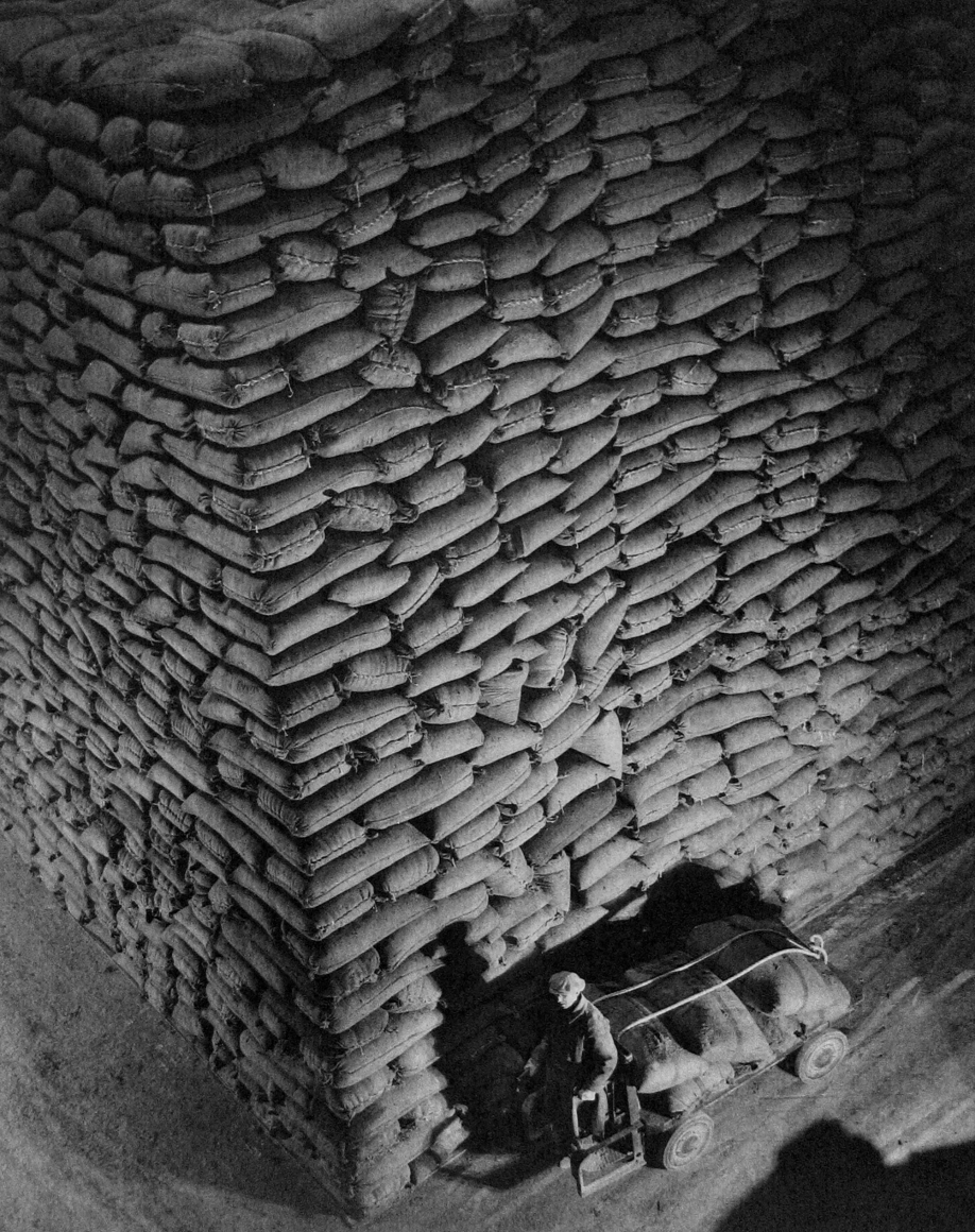 Harold Haliday Costain, Untitled (Sugar Sacks), 1935. A man in the lower right of the frame pulls a cart in front of stacked sugar sacks.