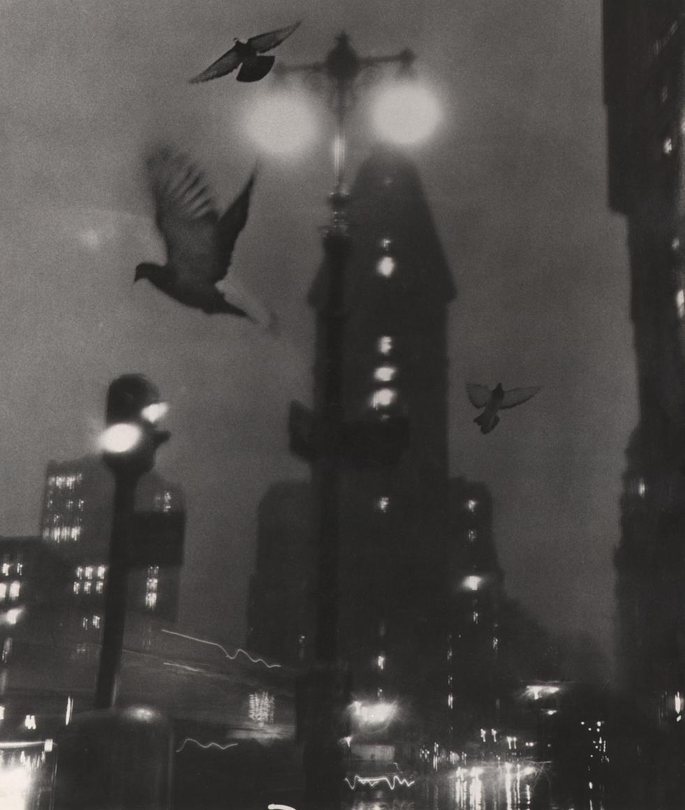 30. David Attie, Flatiron Building, c. 1958. Night scene facing the Flatiron Building, streetlights, car headlights, and three pigeons taking flight.