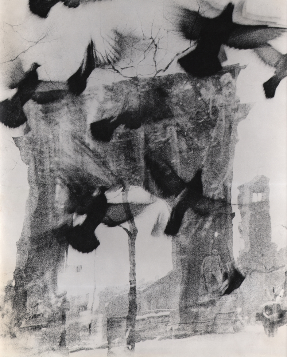 29. David Attie, Washington Square Park, Saloon Society, 1959. Blurred/distorted photo of the Washington Arch with birds taking flight in the foreground.
