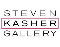 NewYork.com on Steven Kasher Gallery
