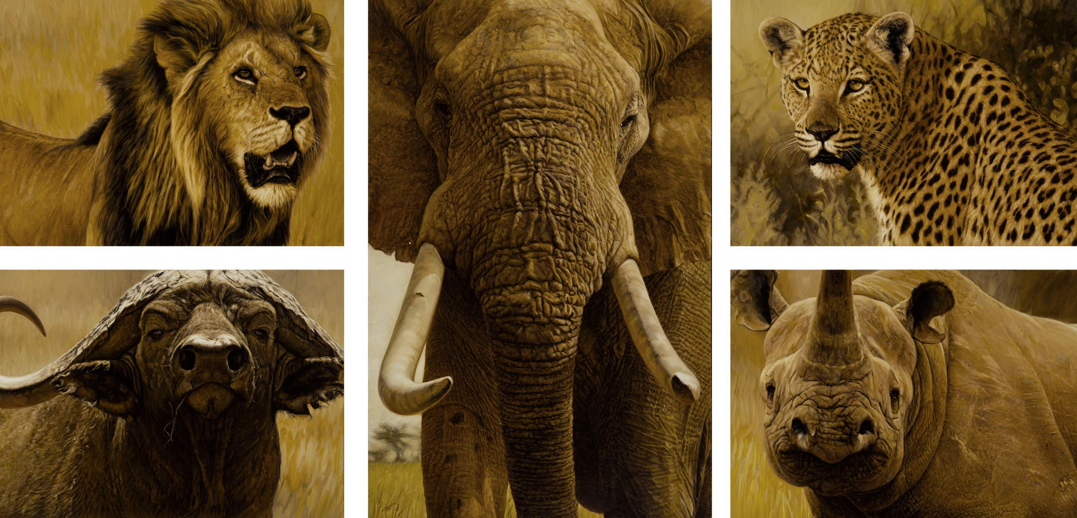 Big Five Collection