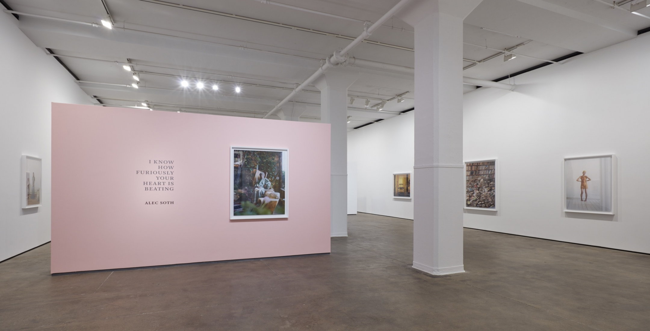 Alec Soth: I Know How Furiously Your Heart Is Beating