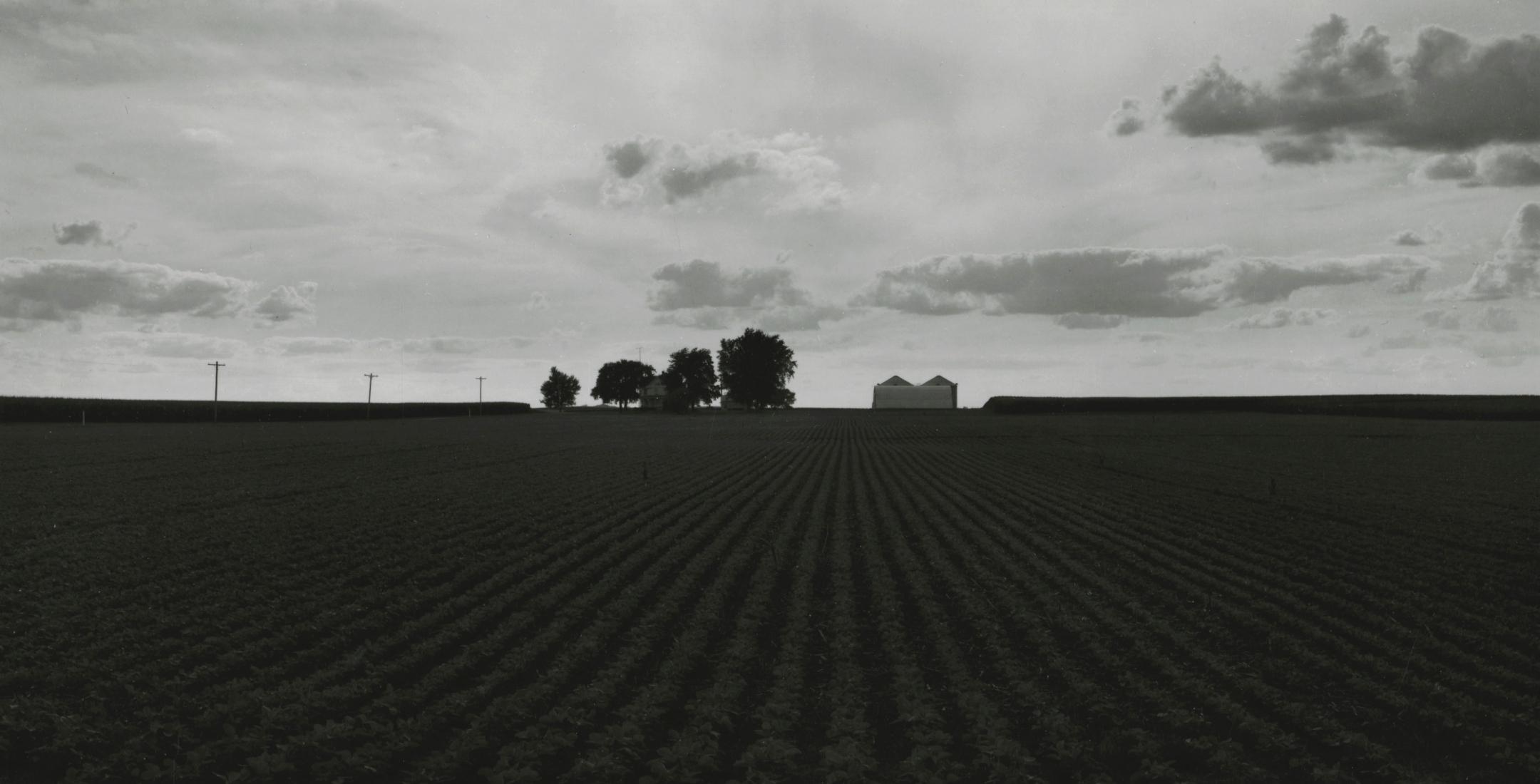 Rhondal McKinney Midwest Horizons