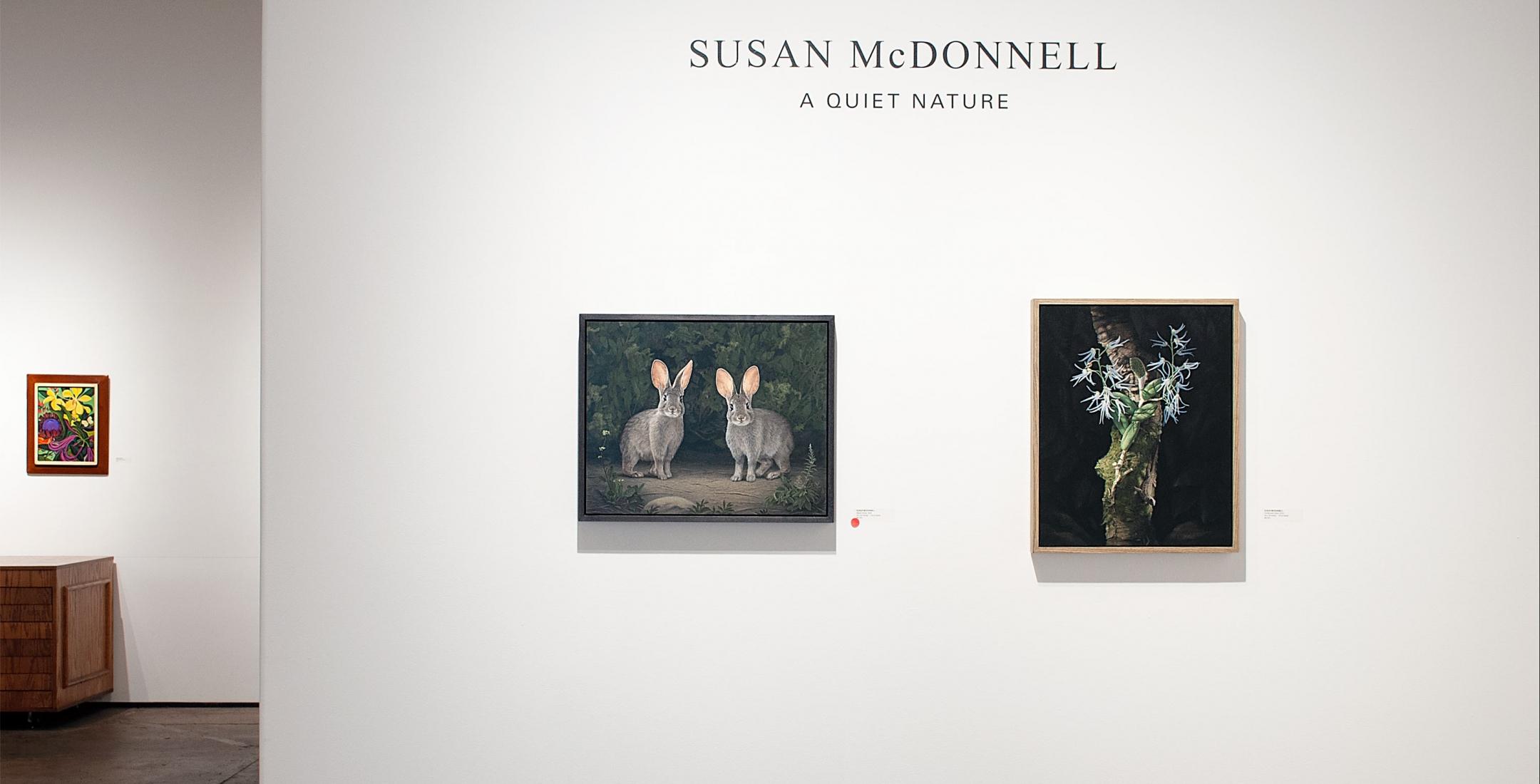 SUSAN MCDONNELL: A QUIET NATURE installation photograph