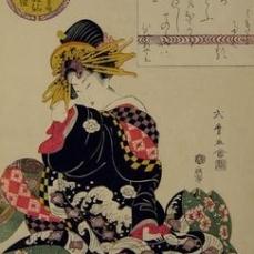 Kitagawa Shikimaro