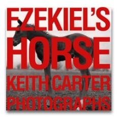 Ezekiel's Horse