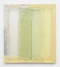 Lauren Luloff Yellow Shield