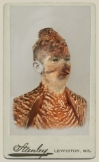 SARA ANGELUCCI | HEATH HEN/EXTIRPATED | AVIARY | CHROMOGENIC PRINT | 22 X 33.5 INCHES | 2013