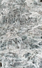 AMY SCHISSEL | EARTH SYSTEMS RELEASE 3 | ACRYLIC, INK, AND GRAPHITE ON PAPER | 40 X 65 INCHES | 2013
