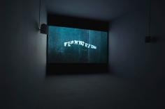 Susan MacWilliam_F-l-a-m-m-a-r-i-o-n_Venice Biennale
