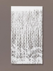 Falling Water I, 2010