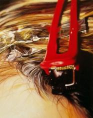 Clip, 2005 Enamel on aluminim