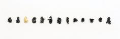 Dove Bradshaw Spent Bullets, 1979/2012