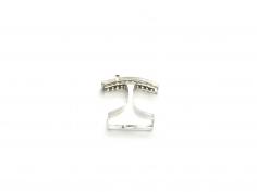 Ted Noten, acrylic ring